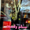 Candy Plum and D.e.e.n Boutique Events